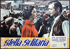 CINEMA-fotobusta STELLA SOLITARIA c. gable, a. gardner