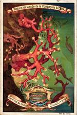 6 Cards c1899 At the Bottom of the Sea Red  Crail Sea Eyelet Starfish Anemone