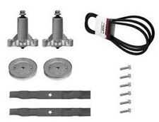 "AYP Sears Craftsman LT1000 LTX1000 42"" Deck Rebuild Kit w/ Spindle Pulley Belt +"