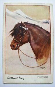 Postcard Shetland Pony Posted 1918 Artist Signed G. Vernon Stokes Photochrom Co