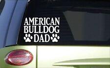 American Bulldog Dad *H772* 8 inch Sticker decal bully bulldogge muzzle trainer