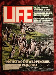 LIFE Magazine April 1984 PENGUINS CYNDI LAUPER REGGIE JACKSON