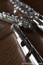 New Di Zhao Flute DZ200 - Beginner Flute- Play-tested by Flute Teacher