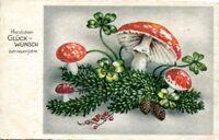 uralte AK, Herzl. Glückwunsch zum neuen Jahre, Tannenzweig mit Pilzen/Kleeblatt