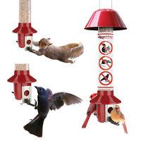 Roamwild PestOff Red Squirrel Proof Cardinal Bird Feeder Mixed Seed
