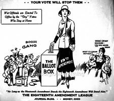 Cartoon. 1920s. Women's Suffrage - Prohibition. 'Your vote will stop them'
