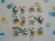 Cute 12 piece Easter Charm Collection