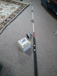 "6'6"" Shakespeare Rod And Salt Water Reel"