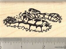 Ball Python Snake Rubber Stamp H11705 WM reptile