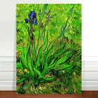Vincent Van Gogh Iris Flower ~ FINE ART CANVAS PRINT 16x12""