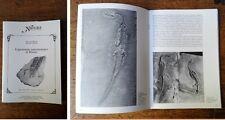 PINNA G., TERUZZI G. - Il giacimento paleontologico di Besano 1991