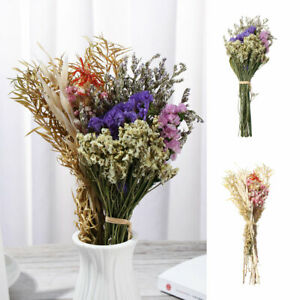 Natural Dried Flower Bouquets Plant Stems Natural Material Home Wedding Decor