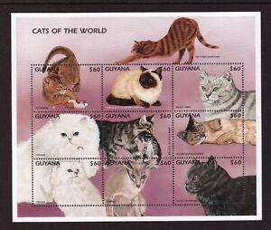 Guyana MNH 1997 Cats, Pets sheet mint stamps