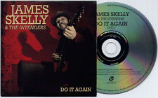 JAMES SKELLY & THE INTENDERS Do It Again UK 1-trk promo CD The Coral card sleeve