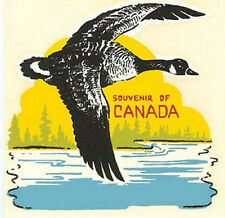 Canada - Goose  50's Vintage Style  Travel Decal Sticker