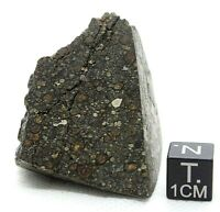 Meteorite Carbonaceous CK3 NWA 13323 officially classified Carbonaceous 70 gram