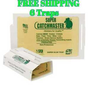 Catchmaster Mouse Insect Glue Boards 72MB Mice Roach Spider Flea Sticky 6 Traps