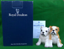ROYAL DOULTON-Il Bulldog CUCCIOLI-DA 248 (Fawn) - LTD EDN con COA-Boxed.