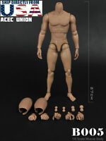 1/6 MUSCULAR FIGURE BODY Narrow Shoulder Hot Toys TTM19 Hot Figure U.S.A. SELLER