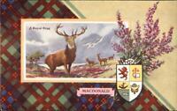 Scottish Clan Crest Tartan Series Valentine's #1753 MacDonald Postcard