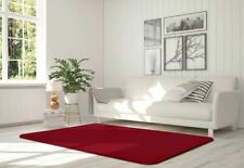 Luxurious Velvet Floor Rug For Living And Bed Rooms Soft Sitting Room Carpet