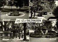 BAD SALZHAUSEN Mehrbild-AK div. Quellen datiert 1966 alte Postkarte ungelaufen