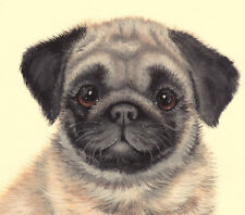 """LIMITED EDITION PRINT PUG """"I AM GORGEOUS"""" FROM  ORIGINAL PAINTING/ SUE BARRATT"""