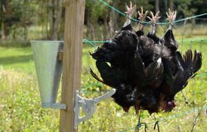 Humane poultry dispatcher