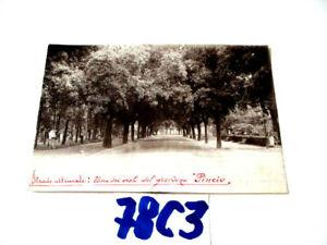 ROMA  FOTOGRAFIA  BITUMATURA STRADE VIALE DEL PINCIO ULTIMATO   (78C3)