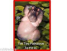 Funny Hippopotamus Refrigerator / Tool Box Magnet Gift Card Insert