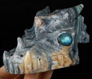 "5.3"" INDONESIAN AGATE Carved Crystal Dragon Skull & Labradorite Eyes"