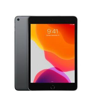 Apple iPad Mini (5th Generation) 256GB, Wi-Fi, 7.9in - Space Gray