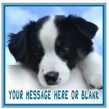 ND3 Border Collie dog personalised Square cake topper icing sheet