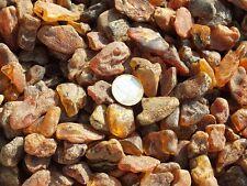 Bursztyn     , Amber    bernstein 1kg  size 2-5gram(3967)