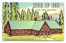 Vintage Postcard Silver Tip Lodge Hunting Fishing Yosemite California B3