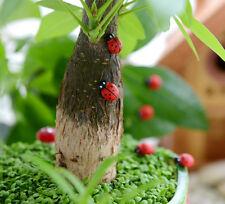 100 Mini Wooden Ladybird Ladybug Sticker Adhesive Garden Party Decorating Craft