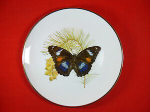 Butterflies of the Aust Garden COMMON EGGFLY Ltd Ed COLLECTORS PLATE Tony Oliver