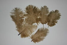 5 FIRST GRADE OLD GOLD 125-150 MM (5-6 INCH) OSTRICH FEATHER HURL FLY FISHING