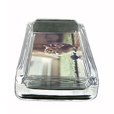 """Funny Cat Glass Ashtray D1 4""""x3"""" Silly Crazy Meow Cool Kitten"""