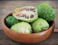 Dried Noni Fruit 2 Oz