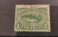 Newfoundland 1882 2c Atlantic Cod yellow green! SG46
