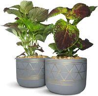 "Plant Pot 2 Piece Ceramic Planter 5.5"" Indoor Plant Pots Modern Succulent Cactus"