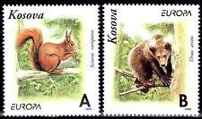 SELLOS TEMA EUROPA 1999 KOSOVO FAUNA/  RESERVAS NATURALES 1v.