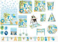 Boy Boys 1st First Birthday Blue Safari Jungle Party Tableware Decorations