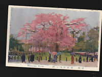 Maruyama Kyoto Japan unused vintage postcard- Beautiful Pink Trees