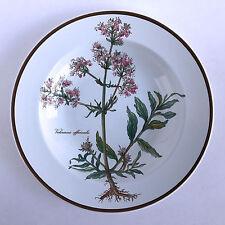 Villeroy & Boch Botanica Salad Plate Imperfect Valeriana officinalis Blue Back