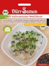 4409 Dürr BIO Keimsprossen Basilikum Ocium basilicum  ca.25g  Samen Seeds