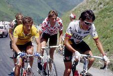 PEDRO DELGADO, STEVEN ROOKS, LUCHO HERRERA, TOUR DE FRANCE 1988 POSTER