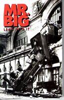 Mr Big Lean Into It 1991 Cassette Tape Album Pop Dance Rock 80s 90s