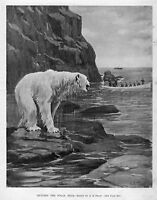 HUNTING THE POLAR BEAR BY A. B. FROST POLAR BEAR HUNT BOATS ROWING TAKING A SHOT